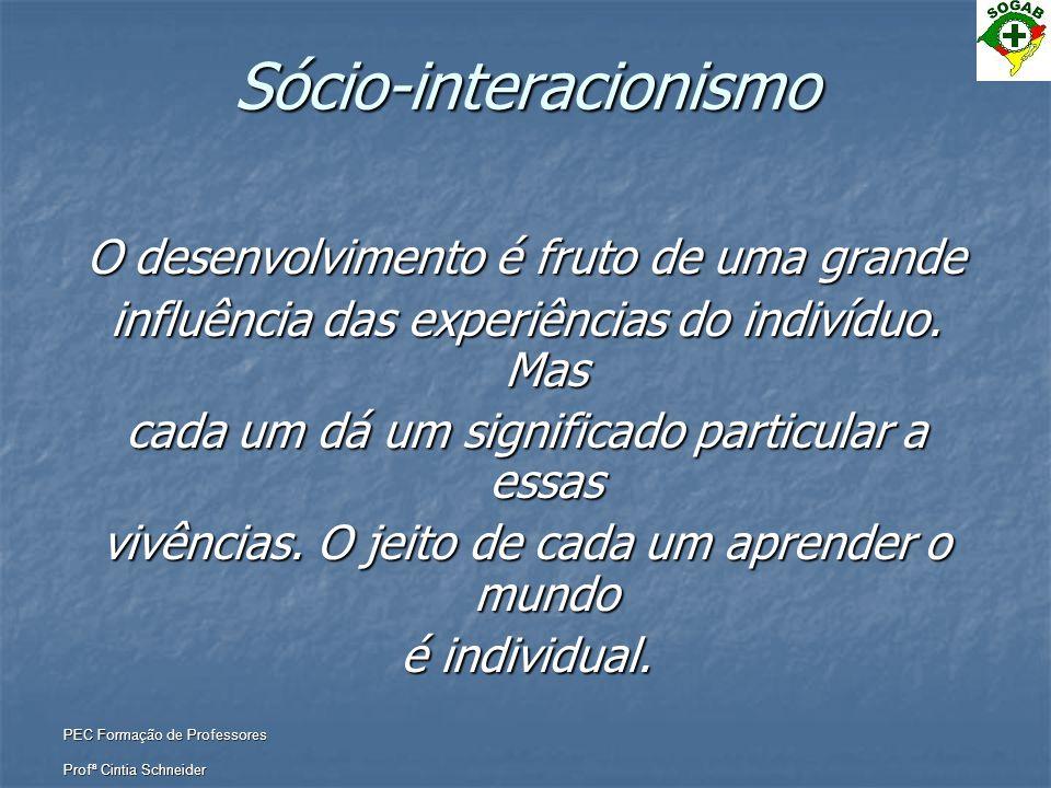 PEC Formação de Professores Profª Cintia Schneider Sócio-interacionismo O desenvolvimento é fruto de uma grande influência das experiências do indivíd