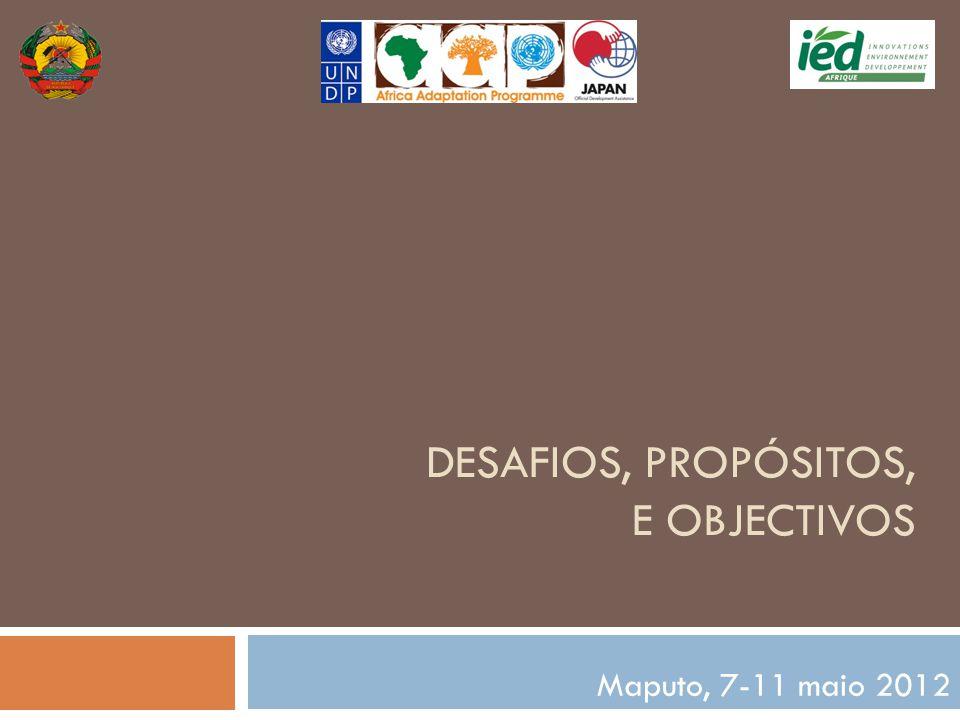 DESAFIOS, PROPÓSITOS, E OBJECTIVOS Maputo, 7-11 maio 2012