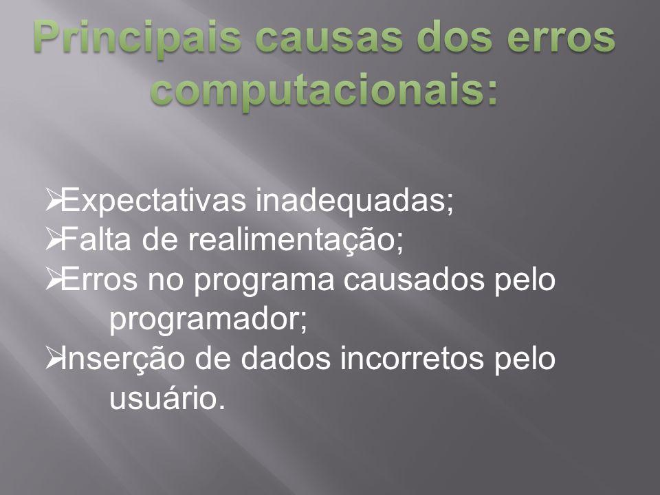  Expectativas inadequadas;  Falta de realimentação;  Erros no programa causados pelo programador;  Inserção de dados incorretos pelo usuário.