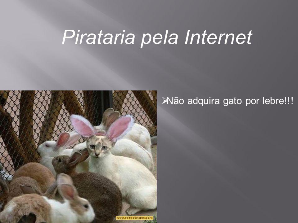 Pirataria pela Internet  Não adquira gato por lebre!!!
