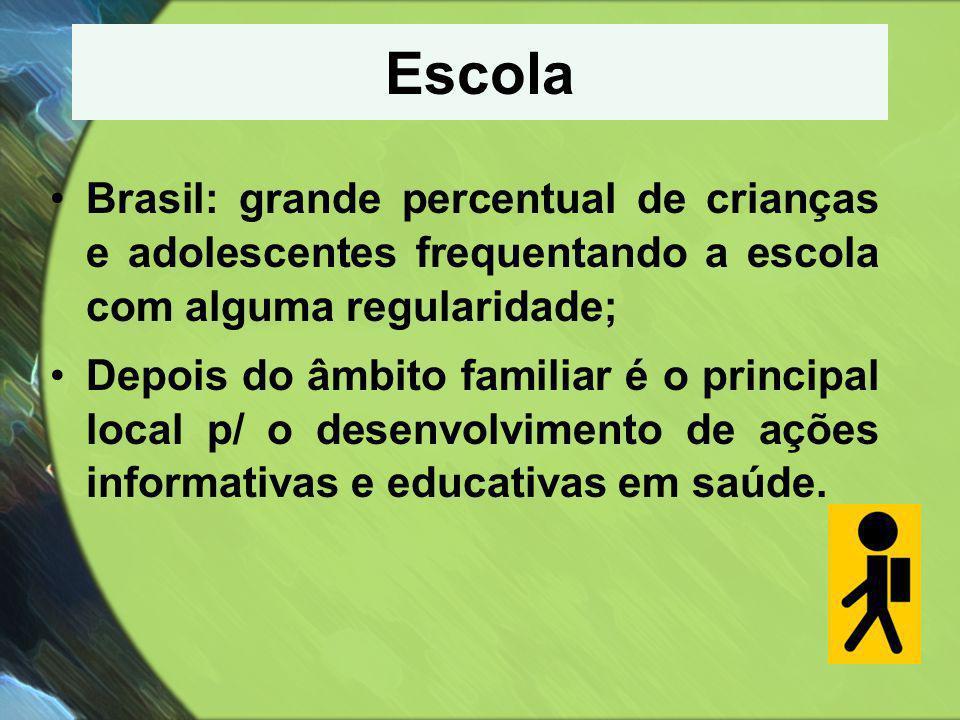 Escola •Brasil: grande percentual de crianças e adolescentes frequentando a escola com alguma regularidade; •Depois do âmbito familiar é o principal l