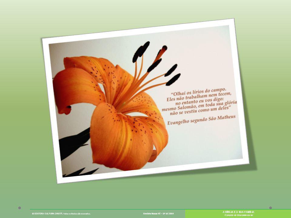 © EDITORA CULTURA CRISTÃ. Todos os direitos são reservados. Revista Nossa Fé – 1º tri 2014 A BÍBLIA E A SUA FAMÍLIA O projeto de Deus para seu lar
