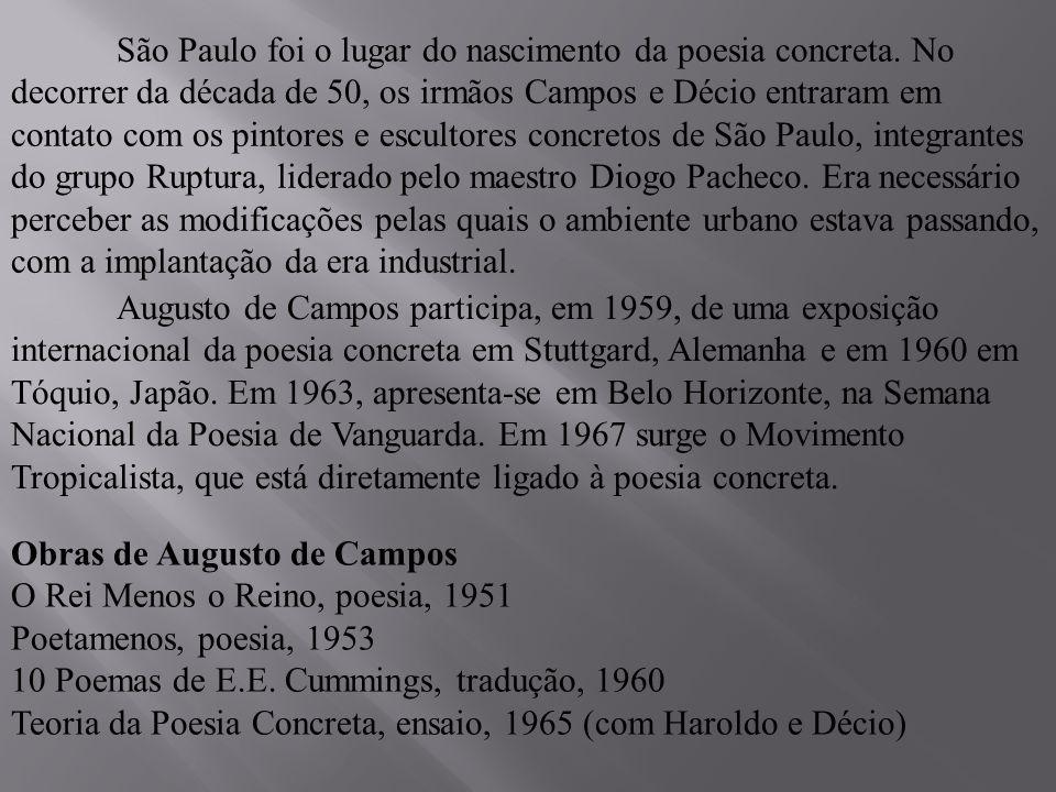 Balanço da Bossa, ensaio, 1968 Re-visão de Kilkerry, ensaio, 1970 Equvocábulos, poesia, 1970 Guimarães Rosas em Três Dimensões, ensaio, 1970 Colidonescapo, poesia, 1971 Poemóbiles, poesia, 1974 (com Júlio Plaza) Mallarmé tradução, 1975 (com Haroldo e Décio) Caixa Preta, poesia, 1975 (com Júlio Plaza) Reduchamp, ensaio, 1976 Verso, Reverso, Contraverso, tradução, 1978 Poesia, Antipoesia, Antropofagia, ensaio, 1978 Pagu: Vida-Obra, ensaio, 1982 Expoemas, poesia, 1985 A Margem da Margem, ensaio, 1989 Mão, poesia, 1990 Clip - poemas, 1997 Os Sertões de Campos, ensaio, 1997 (com Haroldo de Campos) Música de Invenção, ensaio, 1998