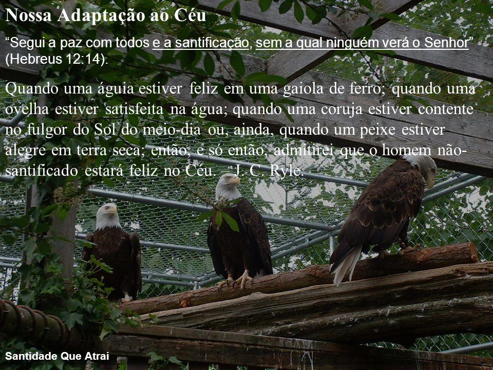 """Nossa Adaptação ao Céu """"Segui a paz com todos e a santificação, sem a qual ninguém verá o Senhor"""" (Hebreus 12:14). Quando uma águia estiver feliz em u"""