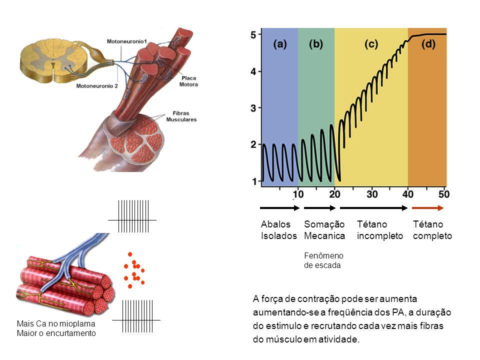 Contração forte Abalos Isolados Somação Mecanica Fenômeno de escada Tétano incompleto Tétano completo A força de contração pode ser aumenta aumentando