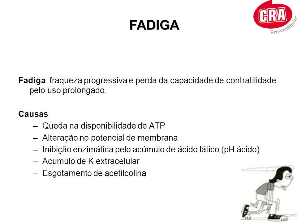 Fadiga: fraqueza progressiva e perda da capacidade de contratilidade pelo uso prolongado. Causas –Queda na disponibilidade de ATP –Alteração no potenc