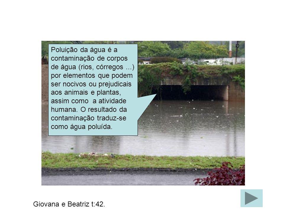 Poluição da água é a contaminação de corpos de água (rios, córregos...) por elementos que podem ser nocivos ou prejudicais aos animais e plantas, assi