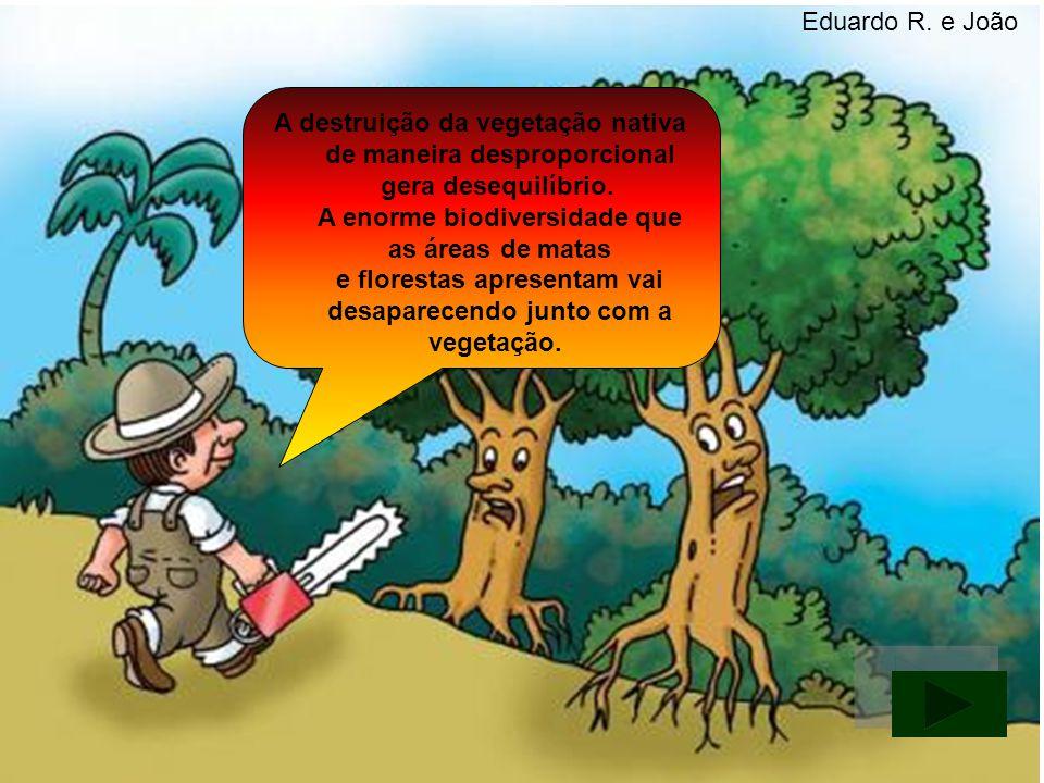 A destruição da vegetação nativa de maneira desproporcional gera desequilíbrio. A enorme biodiversidade que as áreas de matas e florestas apresentam v
