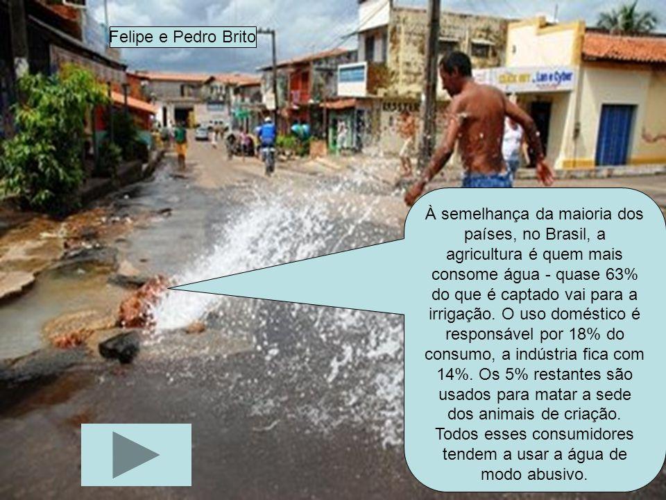À semelhança da maioria dos países, no Brasil, a agricultura é quem mais consome água - quase 63% do que é captado vai para a irrigação. O uso domésti