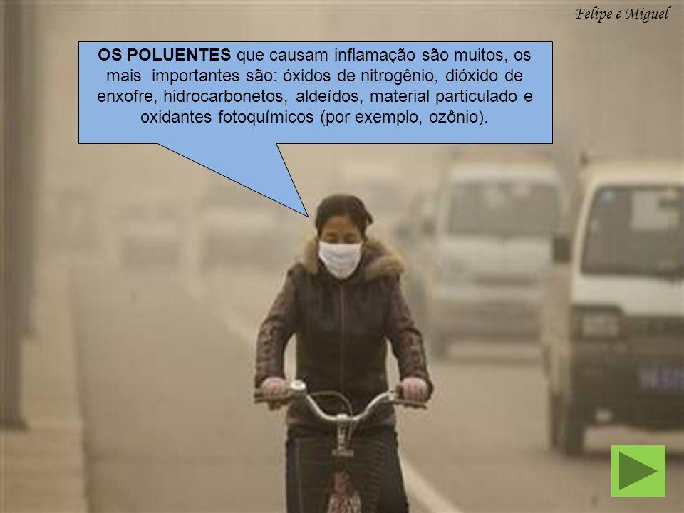 OS POLUENTES que causam inflamação são muitos, os mais importantes são: óxidos de nitrogênio, dióxido de enxofre, hidrocarbonetos, aldeídos, material