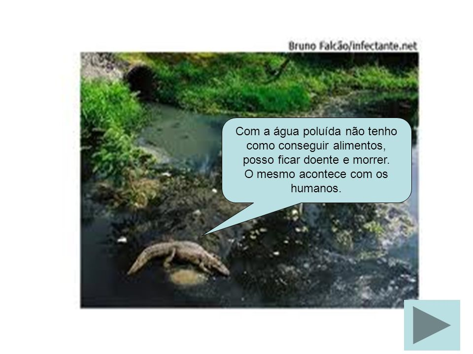 Com a água poluída não tenho como conseguir alimentos, posso ficar doente e morrer. O mesmo acontece com os humanos.