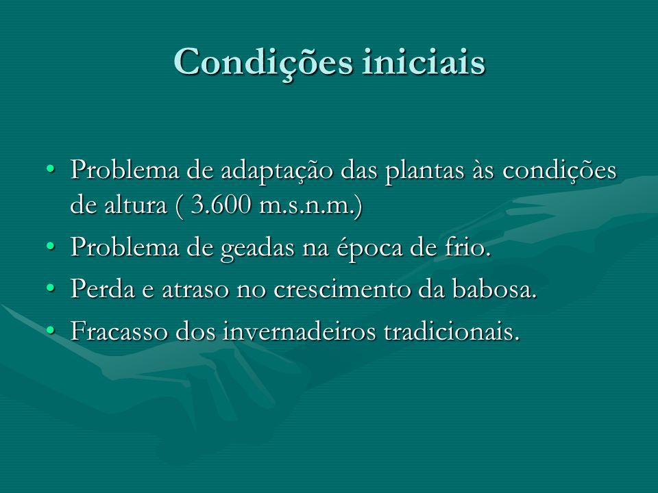 Condições iniciais •Problema de adaptação das plantas às condições de altura ( 3.600 m.s.n.m.) •Problema de geadas na época de frio. •Perda e atraso n
