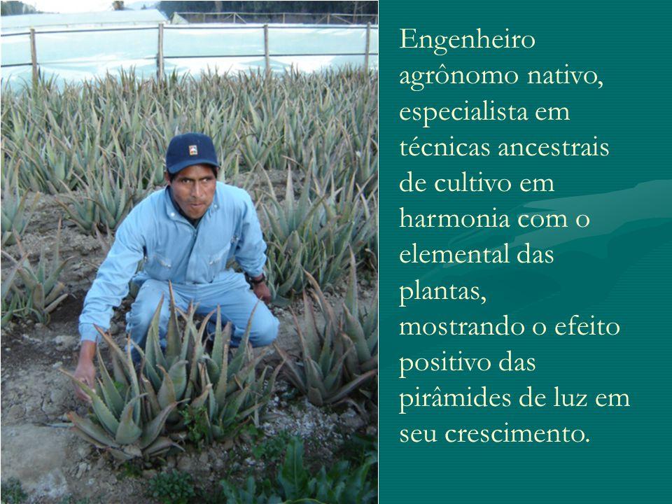 Engenheiro agrônomo nativo, especialista em técnicas ancestrais de cultivo em harmonia com o elemental das plantas, mostrando o efeito positivo das pi