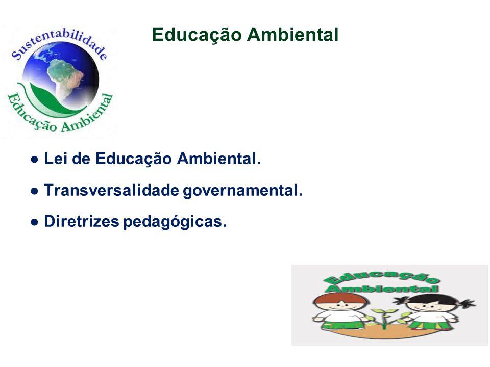 Educação Ambiental ● Lei de Educação Ambiental. ● Transversalidade governamental. ● Diretrizes pedagógicas.