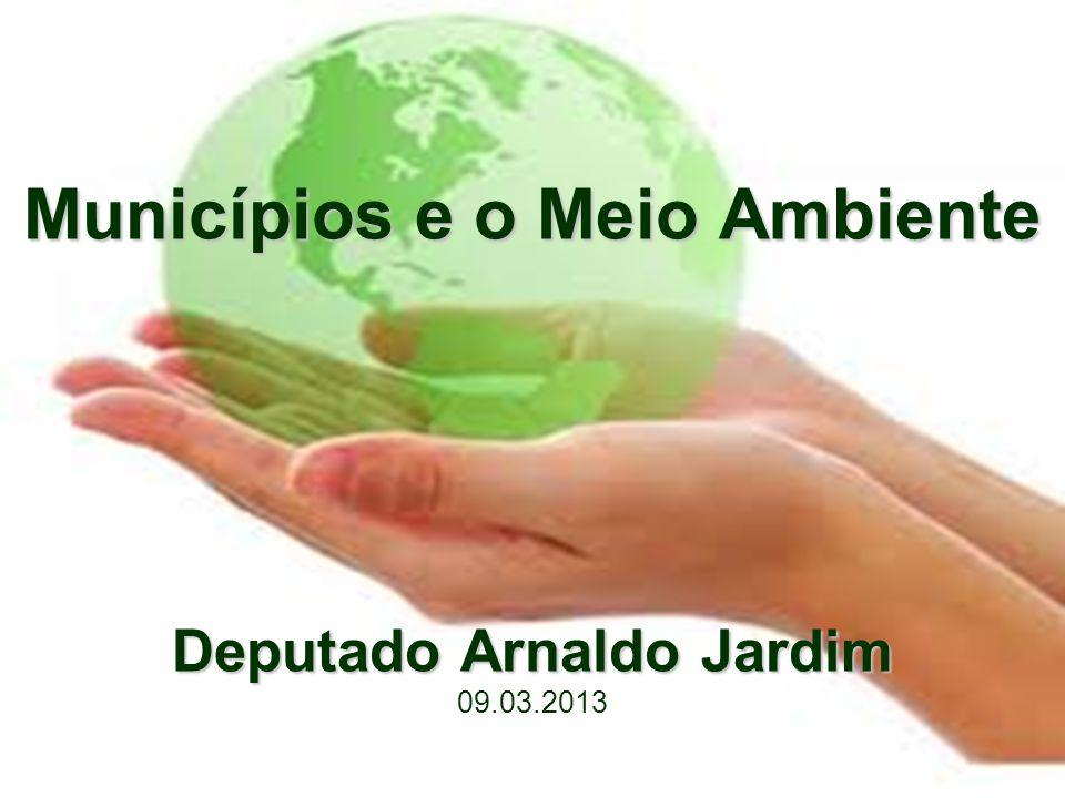 Fontes •www.arnaldojardim.com.brwww.arnaldojardim.com.br •www.frenteambientalista.orgwww.frenteambientalista.org •www.camara.gov.brwww.camara.gov.br •www.conservacao.orgwww.conservacao.org •http://www.onu.org.br/tema/rio20/http://www.onu.org.br/tema/rio20/ •http://cebds.org.br/rio-mais-20/http://cebds.org.br/rio-mais-20/ •http://www.unep.org/