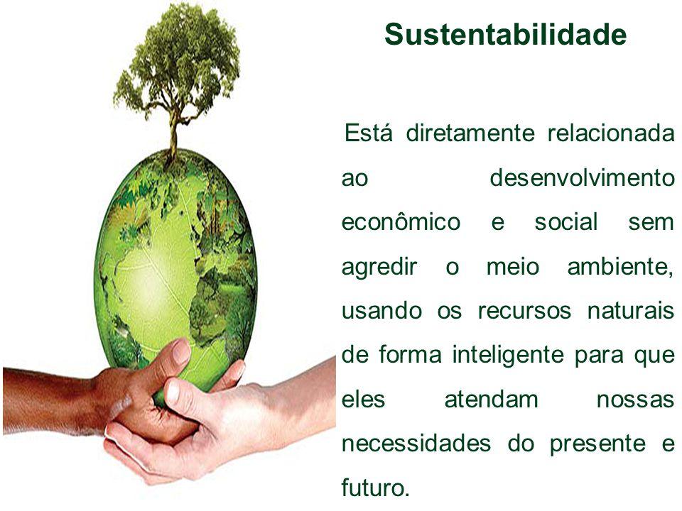 Sustentabilidade Está diretamente relacionada ao desenvolvimento econômico e social sem agredir o meio ambiente, usando os recursos naturais de forma