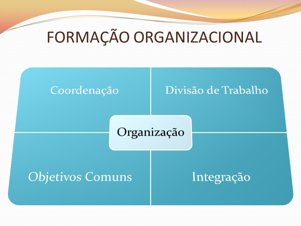FORMAÇÃO ORGANIZACIONAL