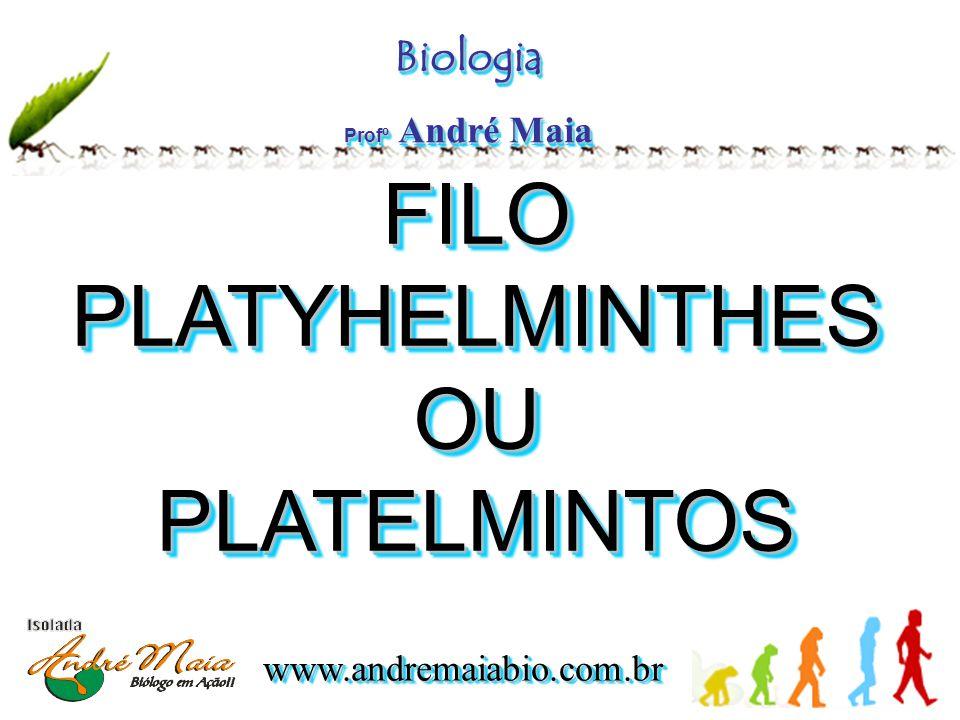 www.andremaiabio.com.brwww.andremaiabio.com.br FILO PLATYHELMINTHES OU PLATELMINTOS FILO PLATYHELMINTHES OU PLATELMINTOS Biologia Profº André Maia Biologia