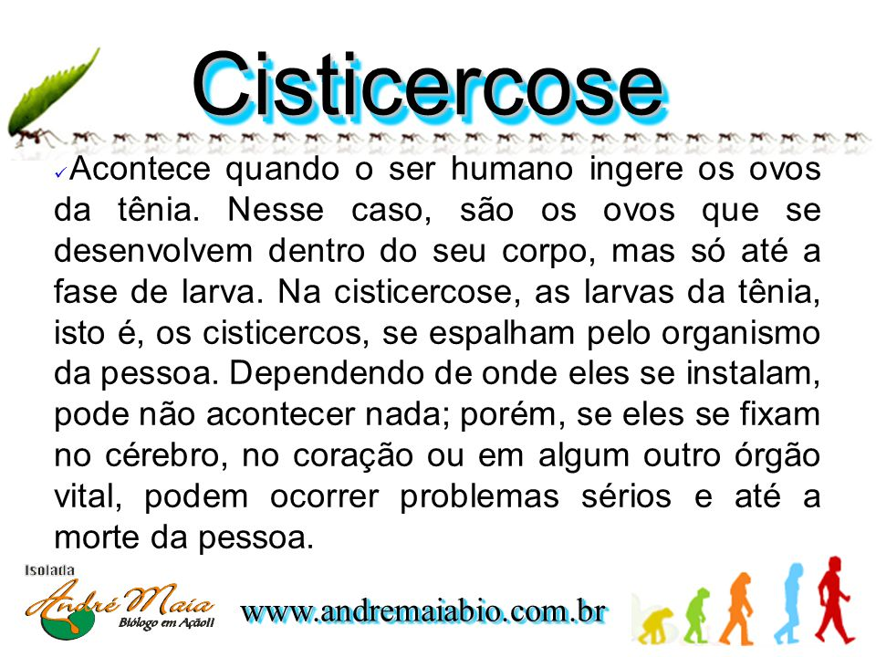 www.andremaiabio.com.brwww.andremaiabio.com.br CisticercoseCisticercose  Acontece quando o ser humano ingere os ovos da tênia.