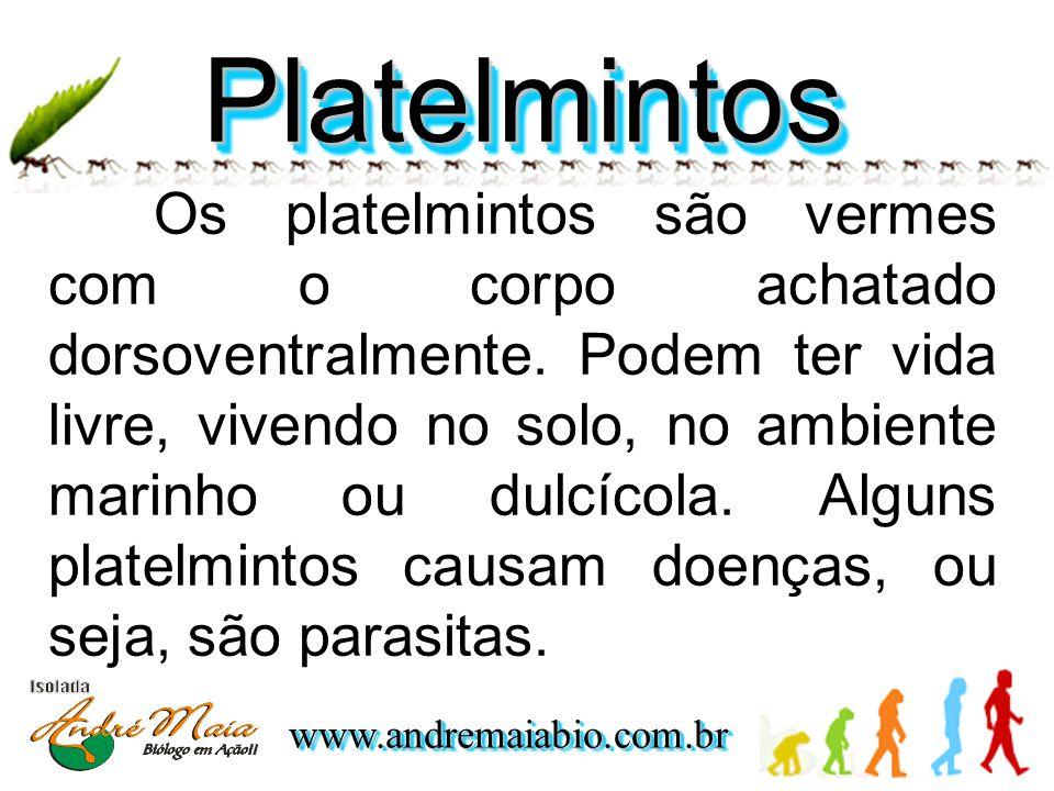 www.andremaiabio.com.brwww.andremaiabio.com.br PlatelmintosPlatelmintos Os platelmintos são vermes com o corpo achatado dorsoventralmente.