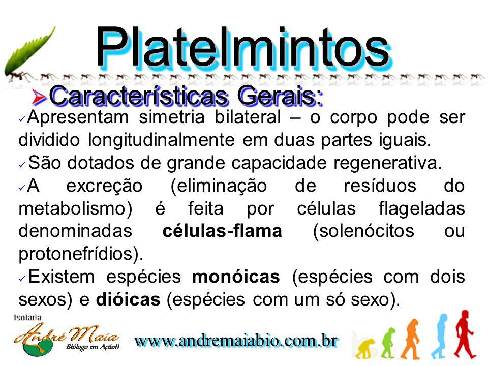 www.andremaiabio.com.brwww.andremaiabio.com.br PlatelmintosPlatelmintos  Características Gerais:  Apresentam simetria bilateral – o corpo pode ser dividido longitudinalmente em duas partes iguais.