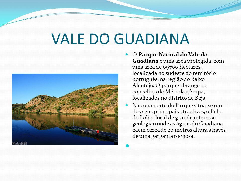 VALE DO GUADIANA  O Parque Natural do Vale do Guadiana é uma área protegida, com uma área de 69700 hectares, localizada no sudeste do território port