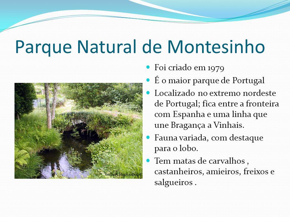 Parque Natural de Montesinho  Foi criado em 1979  É o maior parque de Portugal  Localizado no extremo nordeste de Portugal; fica entre a fronteira