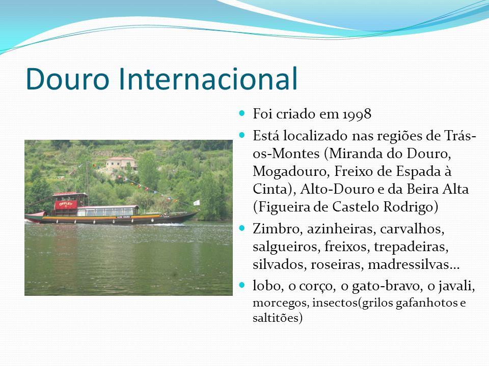 Douro Internacional  Foi criado em 1998  Está localizado nas regiões de Trás- os-Montes (Miranda do Douro, Mogadouro, Freixo de Espada à Cinta), Alt