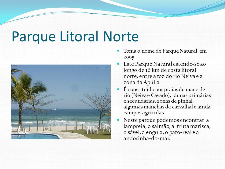 Parque Litoral Norte  Toma o nome de Parque Natural em 2005  Este Parque Natural estende-se ao longo de 16 km de costa litoral norte, entre a foz do