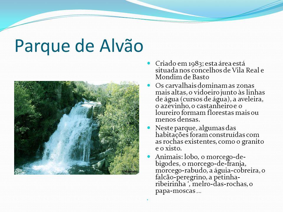 Parque de Alvão  Criado em 1983; esta área está situada nos concelhos de Vila Real e Mondim de Basto  Os carvalhais dominam as zonas mais altas, o v