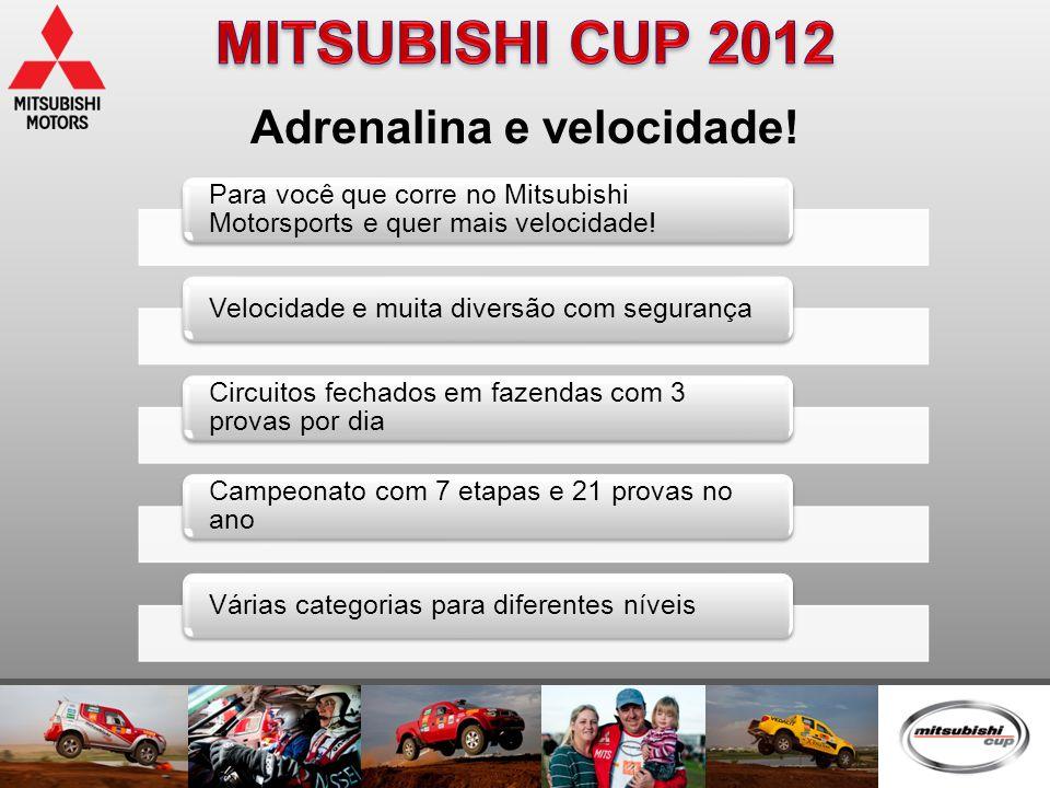 Adrenalina e velocidade! Para você que corre no Mitsubishi Motorsports e quer mais velocidade! Velocidade e muita diversão com segurança Circuitos fec