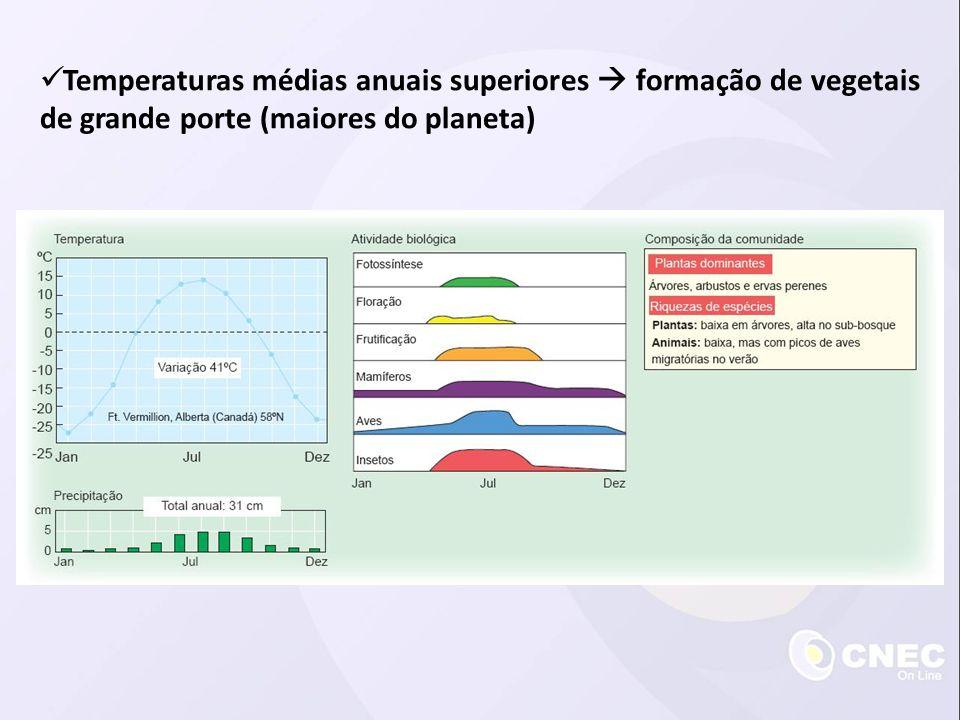  Temperaturas médias anuais superiores  formação de vegetais de grande porte (maiores do planeta)