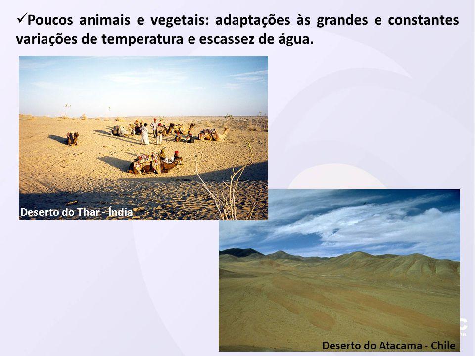  Poucos animais e vegetais: adaptações às grandes e constantes variações de temperatura e escassez de água. Deserto do Atacama - Chile Deserto do Tha