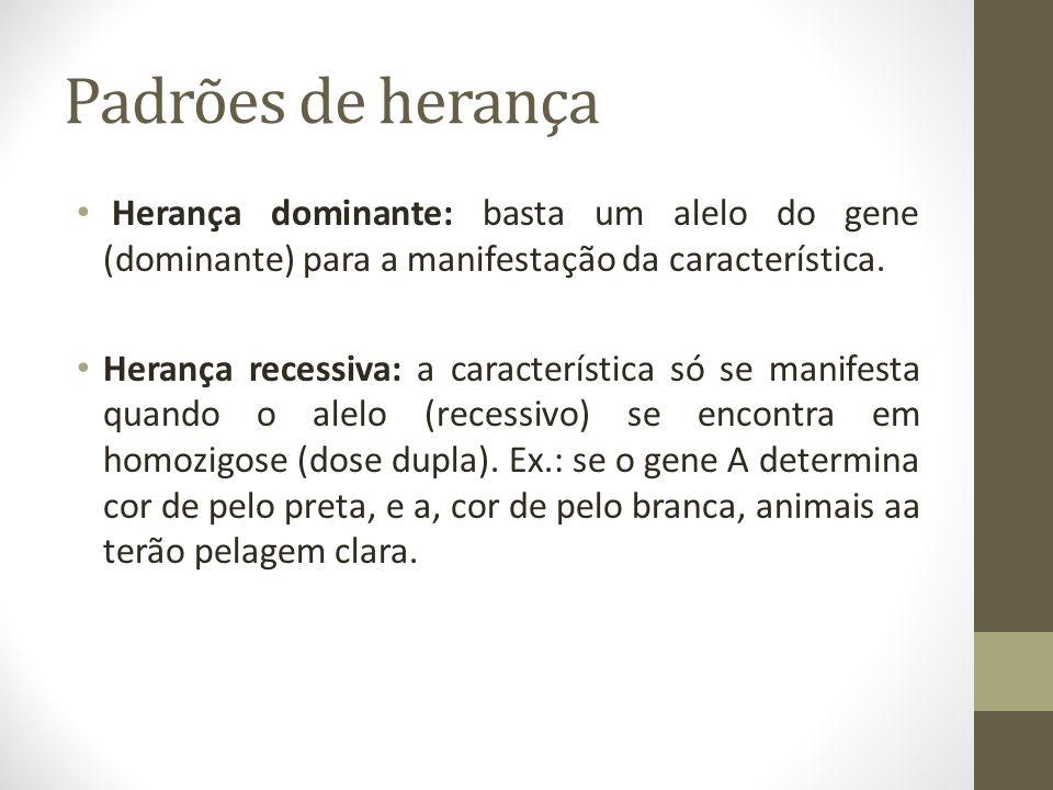 Padrões de herança • Herança dominante: basta um alelo do gene (dominante) para a manifestação da característica. • Herança recessiva: a característic