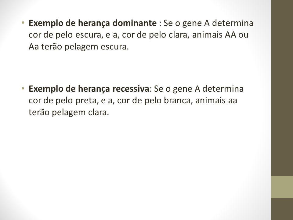 • Exemplo de herança dominante : Se o gene A determina cor de pelo escura, e a, cor de pelo clara, animais AA ou Aa terão pelagem escura. • Exemplo de