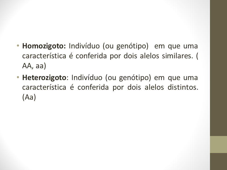 • Homozigoto: Indivíduo (ou genótipo) em que uma característica é conferida por dois alelos similares. ( AA, aa) • Heterozigoto: Indivíduo (ou genótip