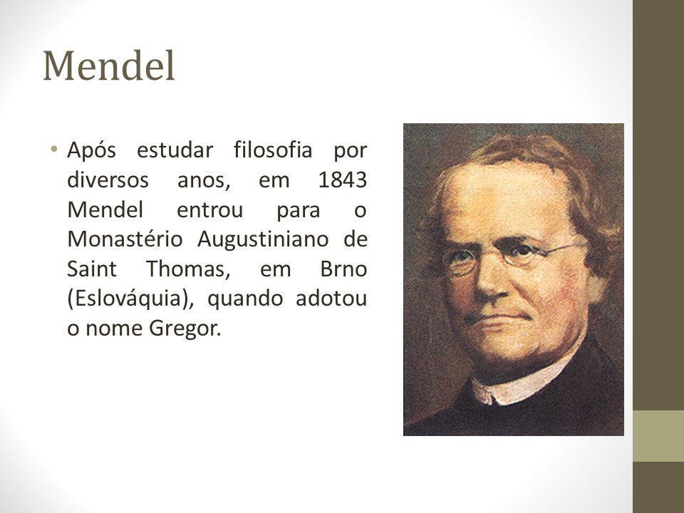 Mendel • Após estudar filosofia por diversos anos, em 1843 Mendel entrou para o Monastério Augustiniano de Saint Thomas, em Brno (Eslováquia), quando adotou o nome Gregor.