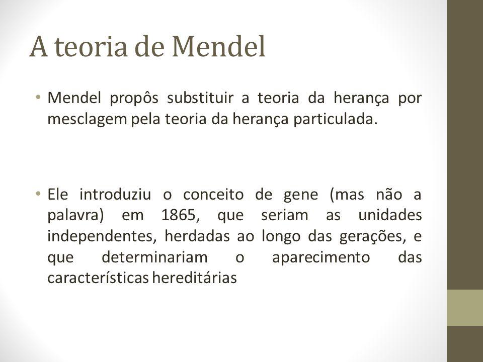 A teoria de Mendel • Mendel propôs substituir a teoria da herança por mesclagem pela teoria da herança particulada. • Ele introduziu o conceito de gen