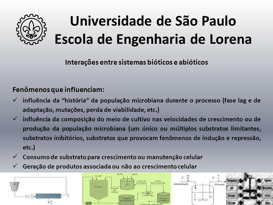 """Universidade de São Paulo Escola de Engenharia de Lorena Interações entre sistemas bióticos e abióticos Fenômenos que influenciam:  influência da """"hi"""