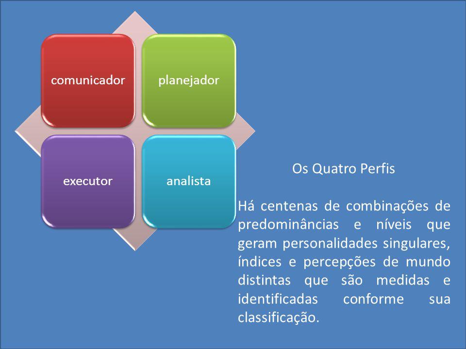 Análise do campo de adaptabilidade funcional Relatório Comportamental