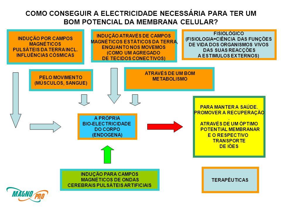 COMO CONSEGUIR A ELECTRICIDADE NECESSÁRIA PARA TER UM BOM POTENCIAL DA MEMBRANA CELULAR.