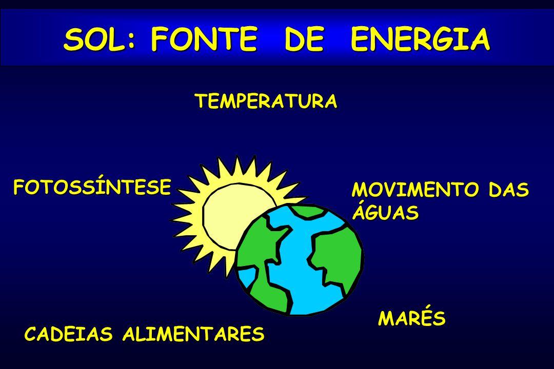 TEMPERATURA MOVIMENTO DAS ÁGUAS MARÉS FOTOSSÍNTESE CADEIAS ALIMENTARES SOL: FONTE DE ENERGIA
