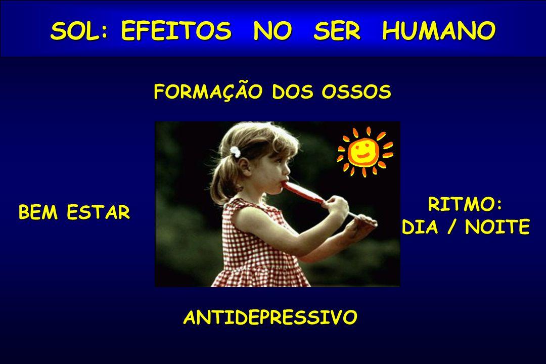 FORMAÇÃO DOS OSSOS RITMO: DIA / NOITE BEM ESTAR SOL: EFEITOS NO SER HUMANO ANTIDEPRESSIVO
