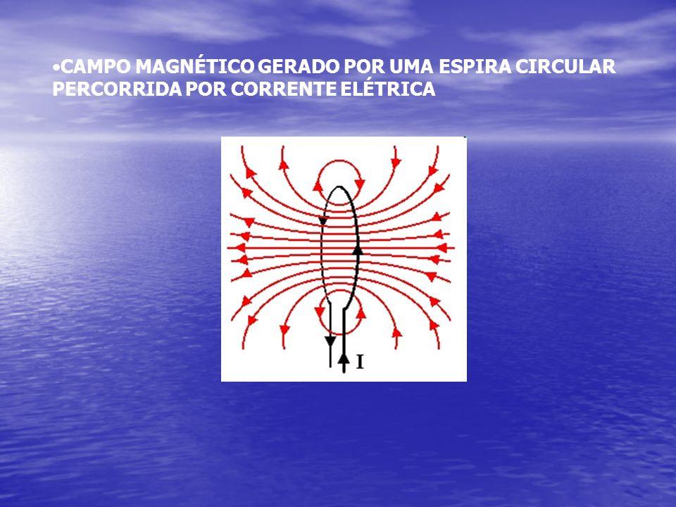 •CAMPO MAGNÉTICO GERADO POR UMA ESPIRA CIRCULAR PERCORRIDA POR CORRENTE ELÉTRICA