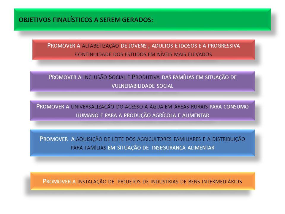 OBJETIVOS FINALÍSTICOS A SEREM GERADOS: P ROMOVER A ALFABETIZAÇÃO DE JOVENS, ADULTOS E IDOSOS E A PROGRESSIVA CONTINUIDADE DOS ESTUDOS EM NÍVEIS MAIS ELEVADOS P ROMOVER A I NCLUSÃO S OCIAL E P RODUTIVA DAS FAMÍLIAS EM SITUAÇÃO DE VULNERABILIDADE SOCIAL P ROMOVER A UNIVERSALIZAÇÃO DO ACESSO À ÁGUA EM ÁREAS RURAIS PARA CONSUMO HUMANO E PARA A PRODUÇÃO AGRÍCOLA E ALIMENTAR P ROMOVER A AQUISIÇÃO DE LEITE DOS AGRICULTORES FAMILIARES E A DISTRIBUIÇÃO PARA FAMÍLIAS EM SITUAÇÃO DE INSEGURANÇA ALIMENTAR P ROMOVER A INSTALAÇÃO DE PROJETOS DE INDUSTRIAS DE BENS INTERMEDIÁRIOS