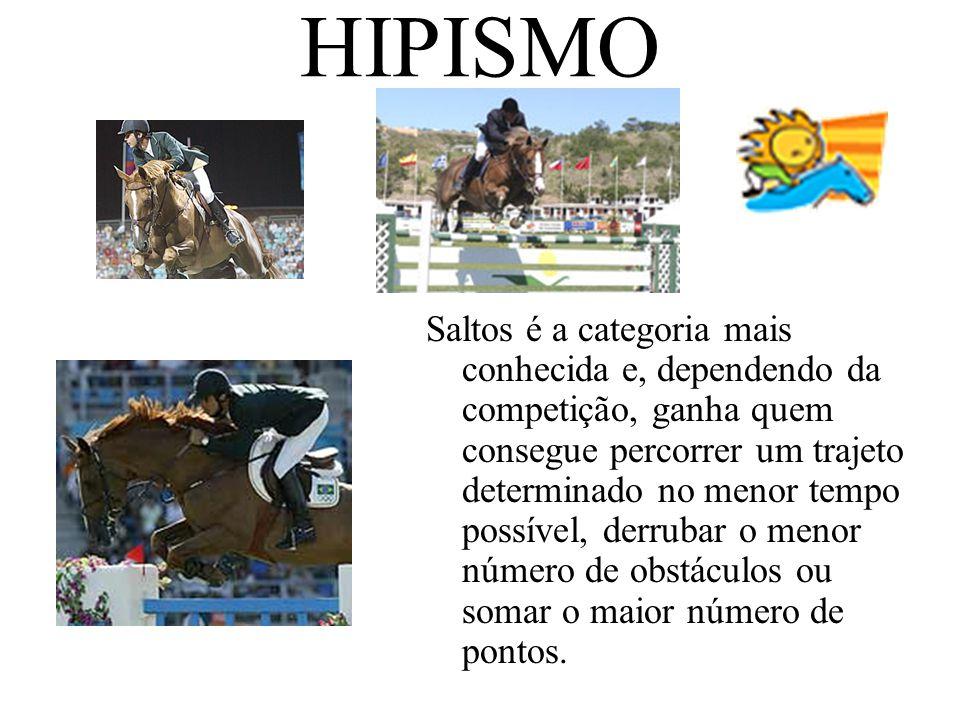 HIPISMO Saltos é a categoria mais conhecida e, dependendo da competição, ganha quem consegue percorrer um trajeto determinado no menor tempo possível,