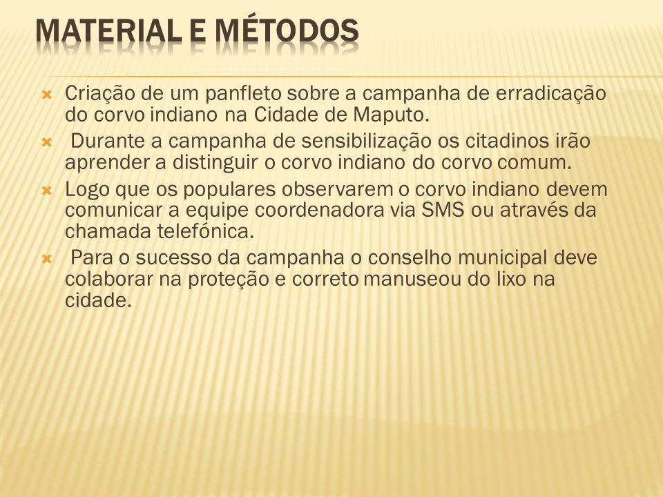  Criação de um panfleto sobre a campanha de erradicação do corvo indiano na Cidade de Maputo.  Durante a campanha de sensibilização os citadinos irã