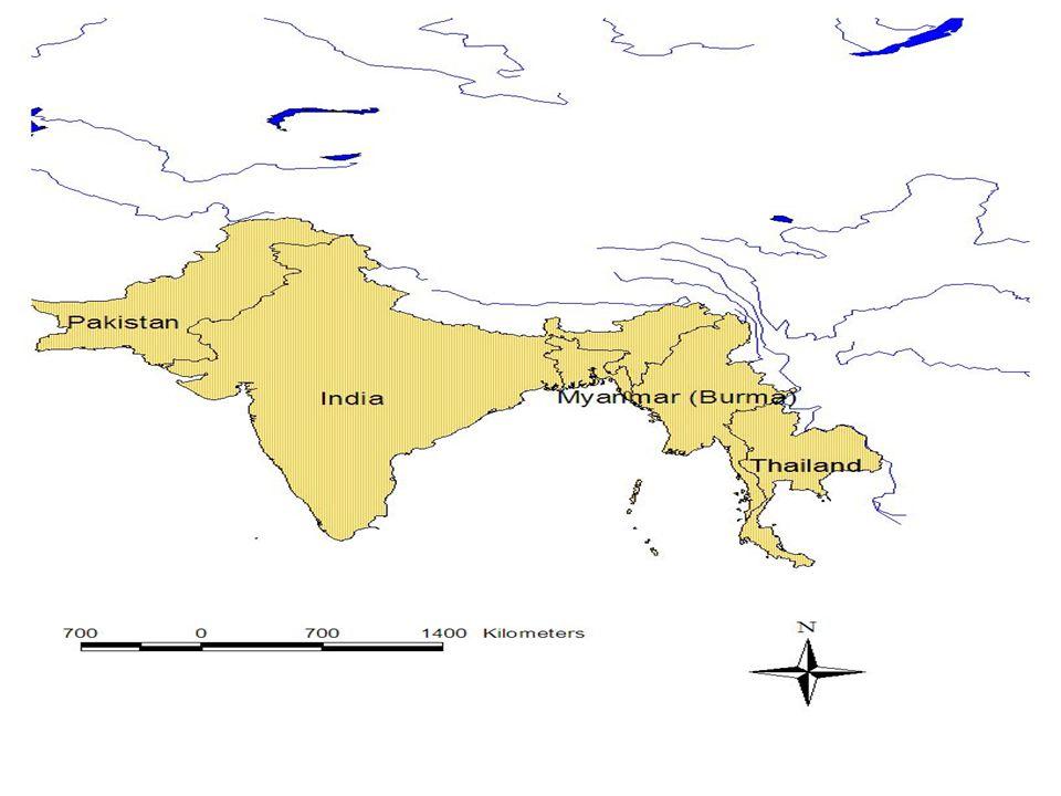 • Menor - 252-304g. •Hábitos – Urbano. • Maior - 545.6-612g • Habitat - Machambas, Savana, Urbano) Museu de História Natural - UEM
