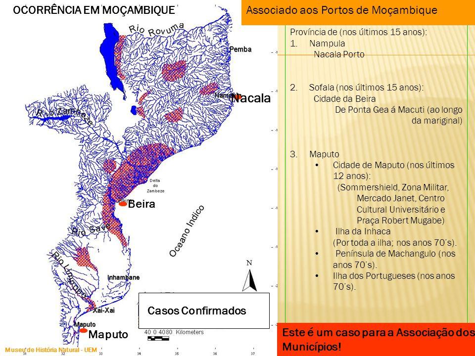 Nacala Maputo Beira Casos Confirmados Província de (nos últimos 15 anos): 1.Nampula Nacala Porto 2.Sofala (nos últimos 15 anos): Cidade da Beira De Po