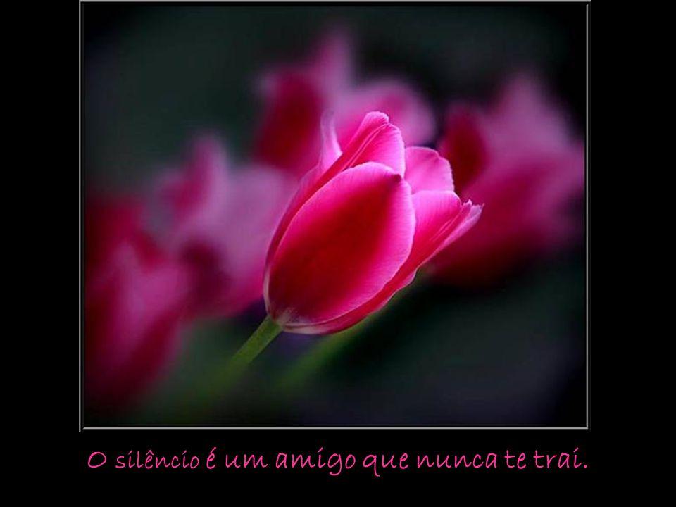 Um verdadeiro amigo é alguém que te dá a mão e chega ao teu coração.